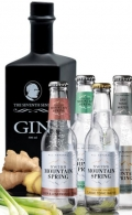 The Seventh Sense GIN & Tonic - 50cl 38,5 vol.%